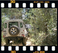 4x4 safari in South Africa.